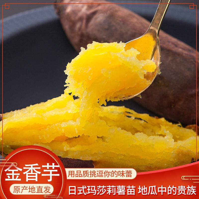 金香芋地瓜